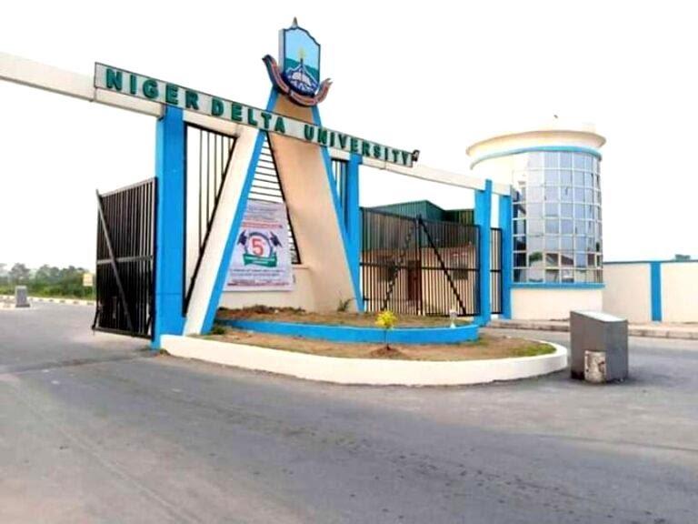 Niger delta university 768x576 1
